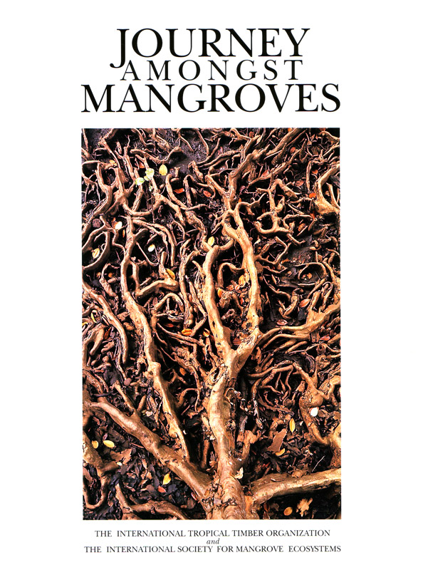 Journey Amongst Mangroves
